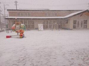 雪が積もりました~♪